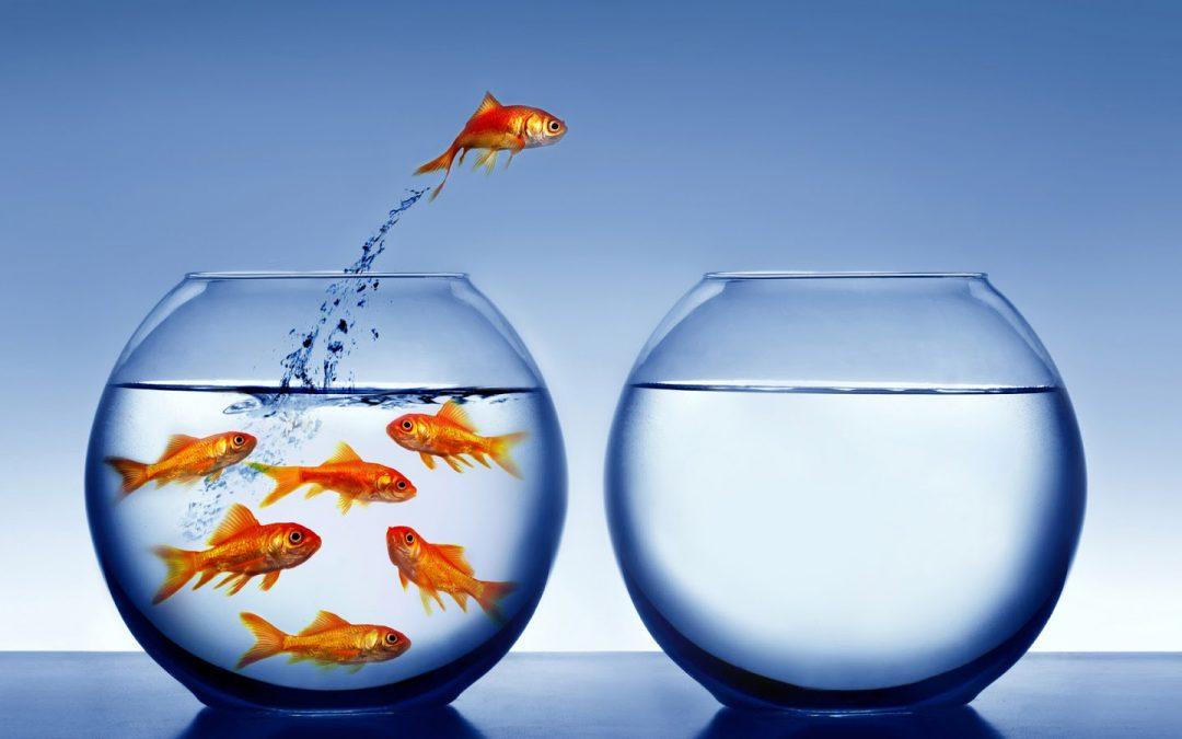 Sal de tu zona de confort y da el cambio que quieres